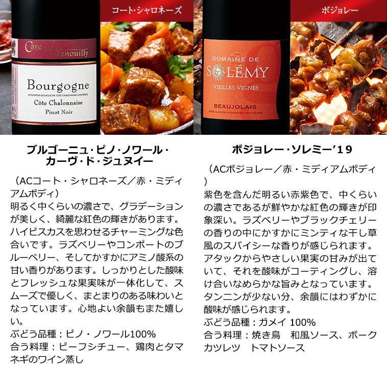 ブルゴーニュ地方満喫赤ワイン6本セット 赤ワインセット