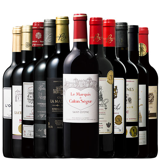 格付け3級シャトー・カロン・セギュールのセカンド入り!ボルドー当たり年11本 赤ワインセット 金賞 ボルドーワイン カベルネ