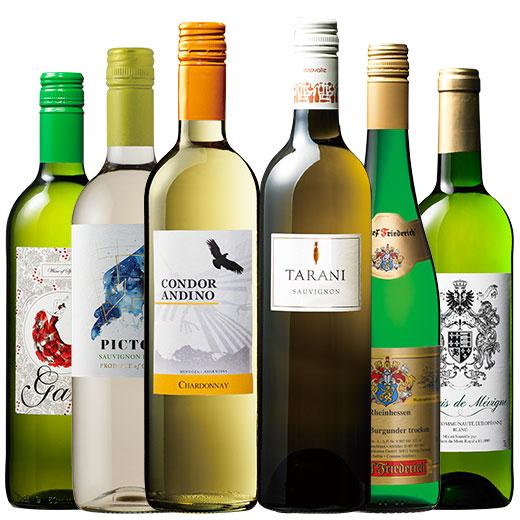 デイリーに楽しむ白ワイン6本セット ワインセット チリワイン シャルドネ