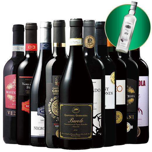 金賞バローロ入り!三大銘醸国の赤ワイン10本&ジン1本セット ワインセット 赤ワイン
