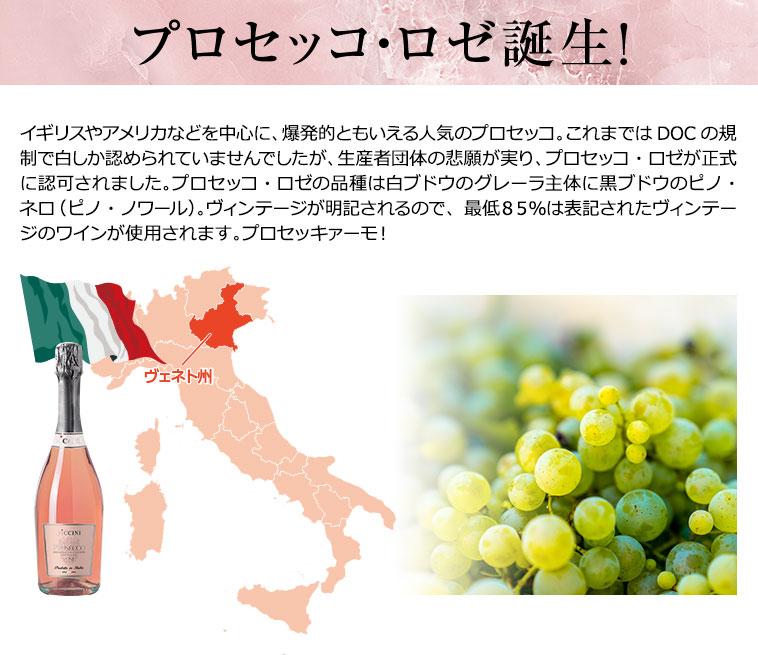 プロセッコ&ノンフィルタースプマンテ5本セット ワインセット ワイン スパークリングワイン ロゼワイン