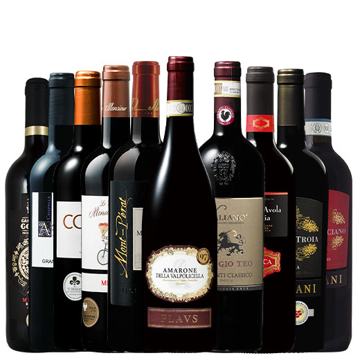 ワイン誌97ptアマローネ&ノーベル賞晩餐会提供ワイン&モンペラ入り!欧州赤10本 赤ワインセット 金賞 ボルドーワイン モン・ペラ イタリア カベルネ