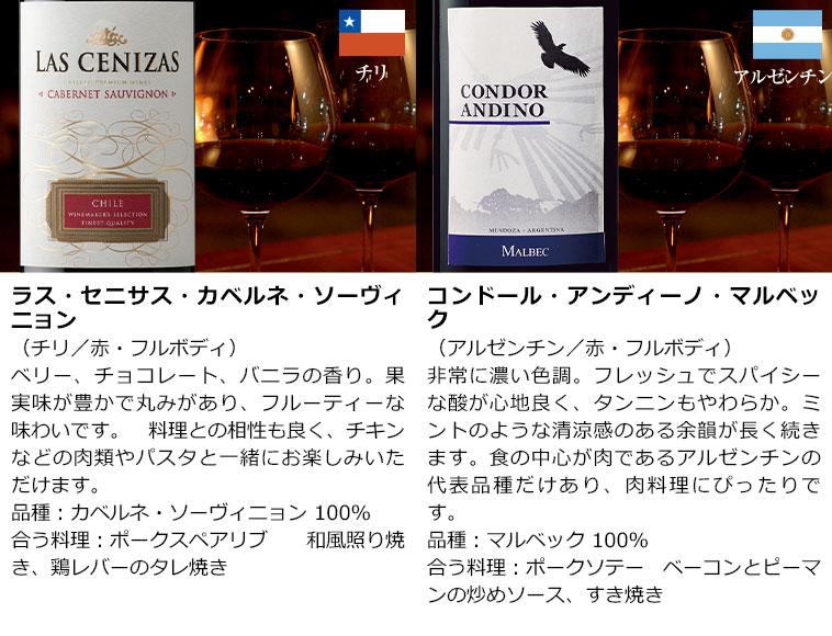 パーカー高評価生産者ワイン入り!世界6ヵ国赤ワイン12本セット 赤ワインセット 金賞 ボルドーワイン イタリア カベルネ