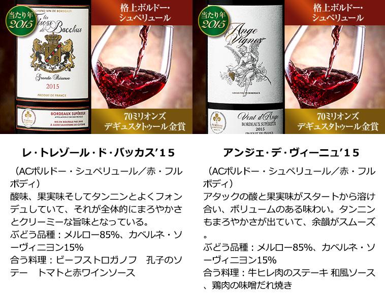 8年熟成金賞クリュ・ブルジョワ入り!ボルドー最強級赤ワイン10本セット