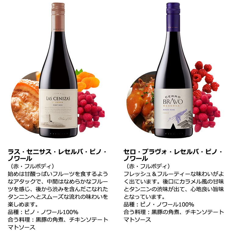 ブルゴーニュ&トリプル金賞入り!世界のピノ・ノワール飲み比べ9本セット  赤ワインセット ブルゴーニュ