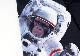 メンズ イエローラベル マイクロボクサーパンツ - ASTRONAUT APE アストロノート エイプ