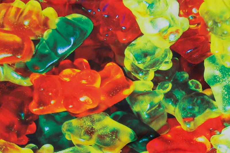 メンズ イエローラベル マイクロボクサーパンツ - BEAR CANDIES ベアキャンディ