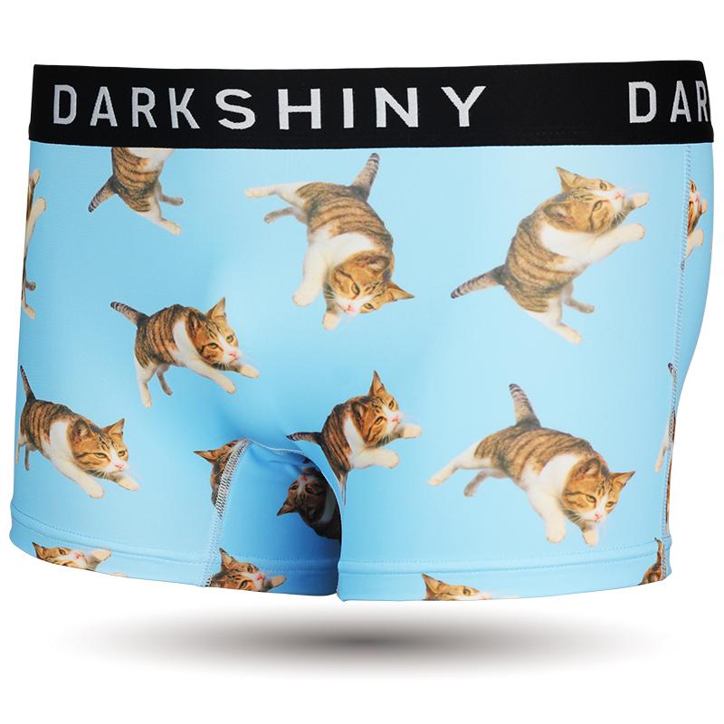 DARKSHINY ×TOBINEKO 飛び猫 コラボ ユニセックスボクサーパンツ - SKY スカイ