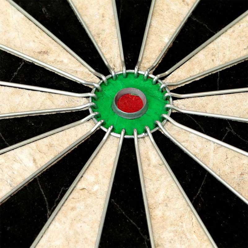 TARGET(ターゲット) WORLD CHAMPION DARTBOARD <109045> (ダーツ ボード)