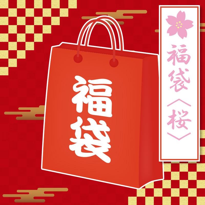 【数量限定】ダーツハイブ福袋2021 <桜>