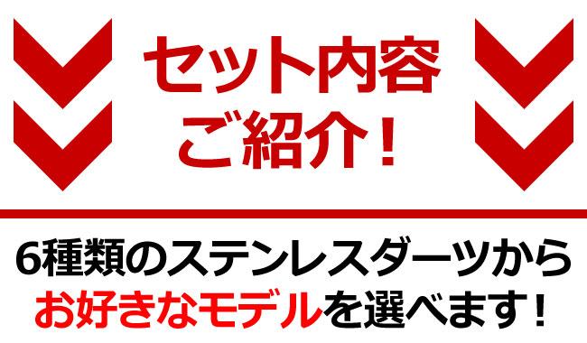 ★【セット商品】D.CRAFT(ディークラフト) セレブ初心者セット (ダーツ バレル)