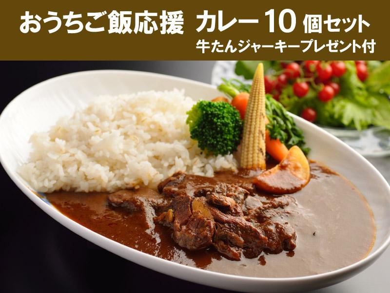 <送料無料>カレー10個セット ミニジャーキープレゼント付