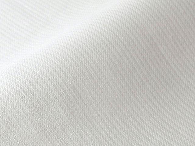 リトアニア産リネン/生地/10cm単位でカット/ピラストロ