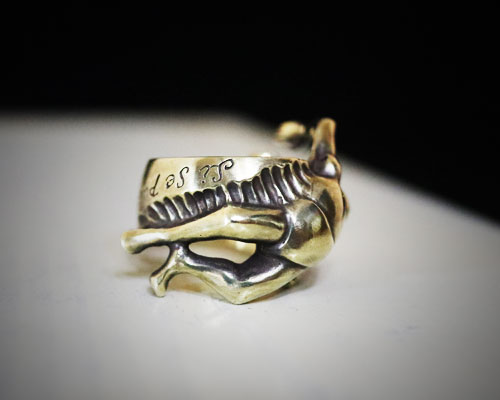 """""""Si Se Puede!!""""Ring -BRASS"""