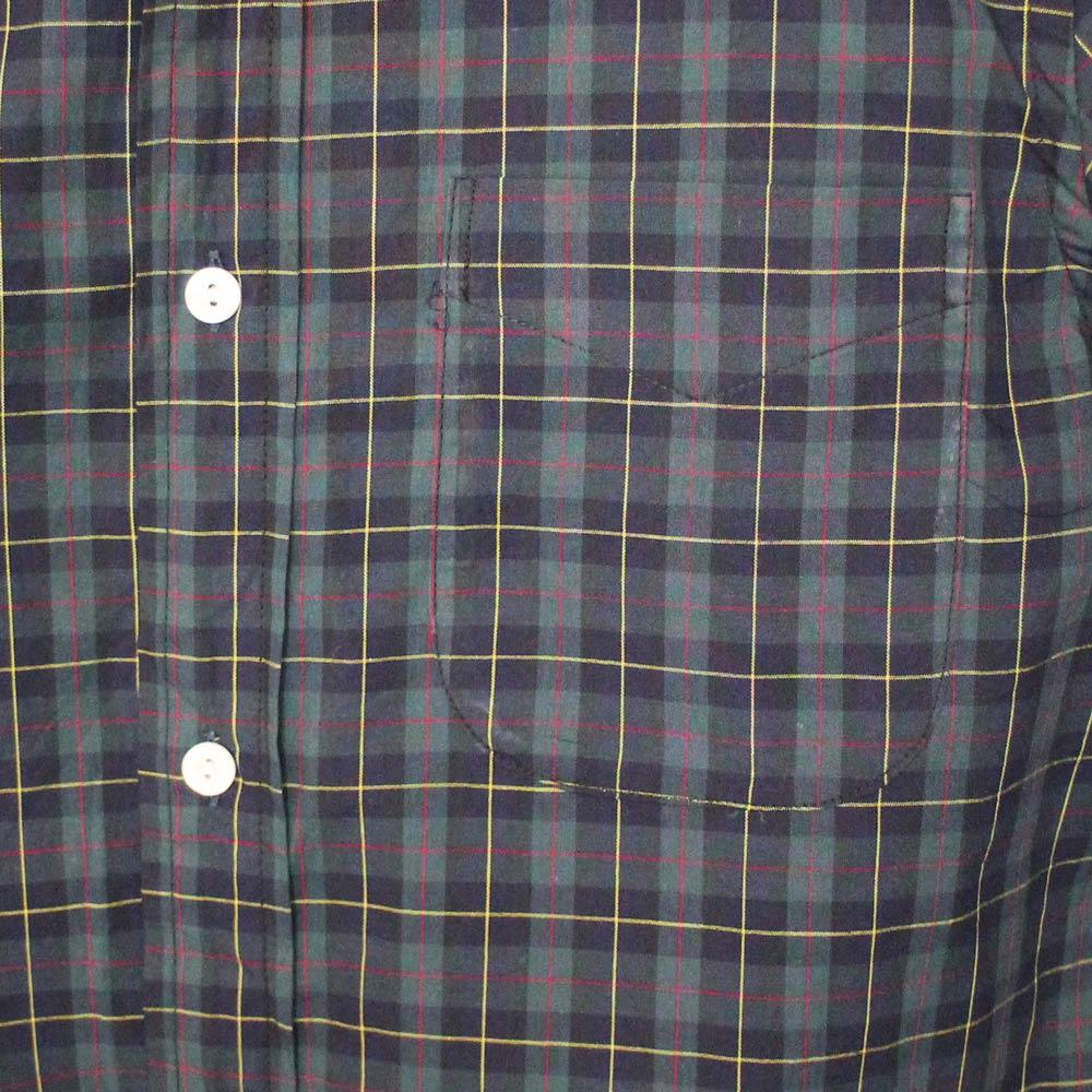 Tieasy Plus (ティージー・プラス) - Tieasy Plus Shirts (長袖BDシャツ) (Green Turtain Check)