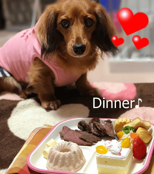信州鹿肉ローストディナー★冷凍便