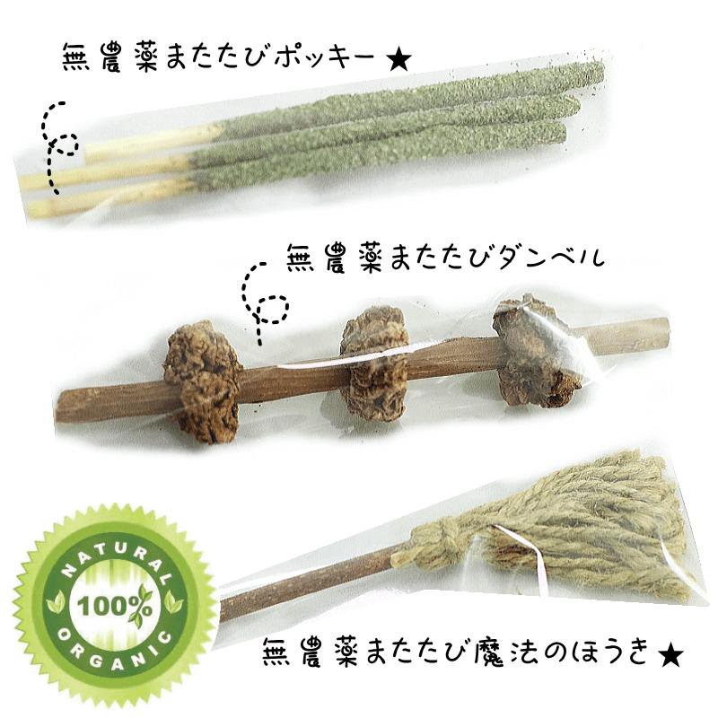 無農薬・オーガニック★ Catトイ