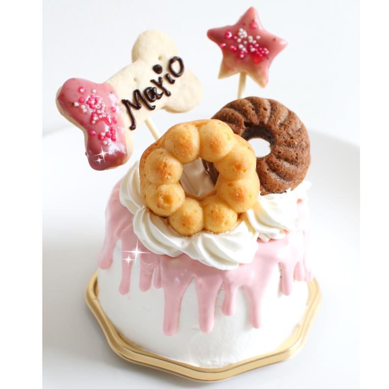 Rainbone★レインボーン!5号★冷凍便