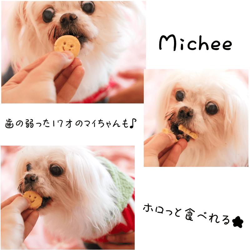 アレルギー対応★ELYのソフトクッキー♪綾紫
