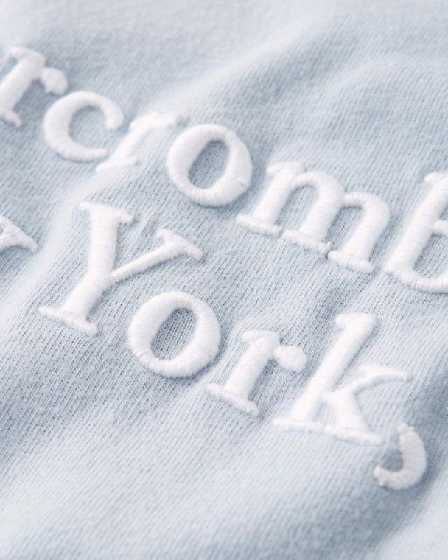 大きいサイズ メンズ アバクロ Abercrombie&Fitch グラフィックロゴ刺繍  クルーネック 半袖Tシャツ XXL 【メール便対応】 [M便 1/1]