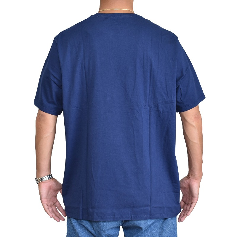 大きいサイズ メンズ パタゴニア patagonia 半袖Tシャツ フィッツロイ スコープ オーガニック XL XXL 【メール便対応】 [M便 1/1]