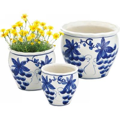 敬老の日ギフト植木鉢