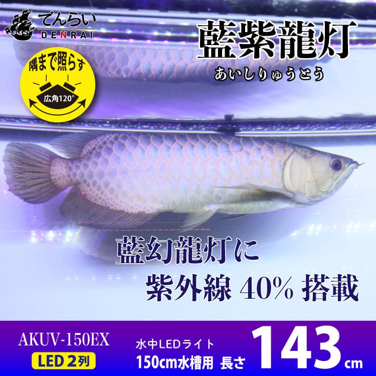 アロワナ水中照明 藍紫龍灯 ワイルドブルー UV 40% EX LED2列 金龍 150cm水槽用 AK-150UV-EX