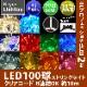 RLプロフェッショナルLED 2芯 100球ストリングライト 電源部別売 クリアコード