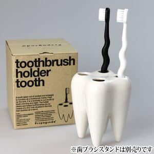 デザイン歯ブラシ ゼブラシ(ホワイト&ブラック各1本2本入り)【Ciメディカル 歯ブラシ】