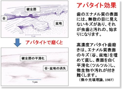 薬用シェルピカ / 1本(80g)