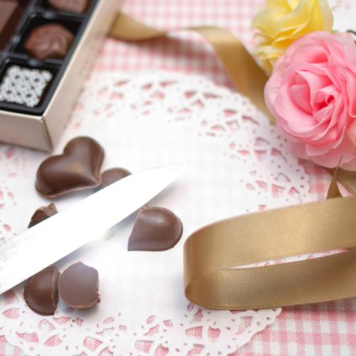 【定期購入・品切れ】チョコレート