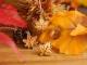 秋アクセに♪ ぴたっとイヤリング・ピアス どんぐりと葉っぱ