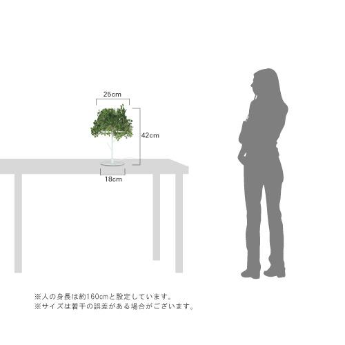 Foresti table lamp フォレスティ テーブルランプ