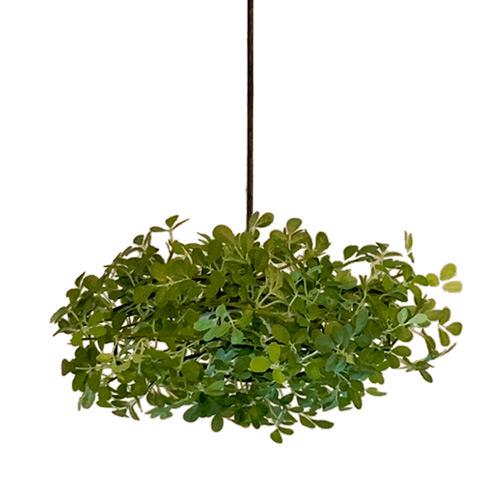 【リニューアル】LED Alloro pendant lamp LEDアローロ ペンダントランプ