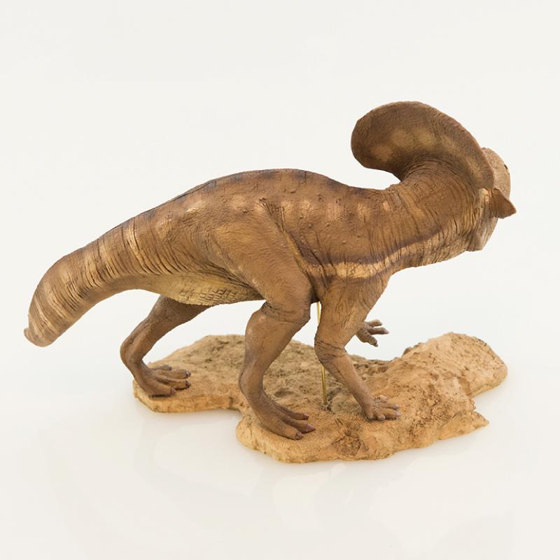 恐竜王国秋祭りシリーズ プロトケラトプス/Protoceratops