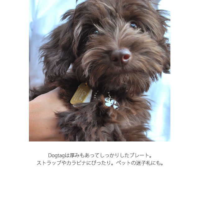 オーダードッグタグ Order Dog Tag (名入れ):Kariet