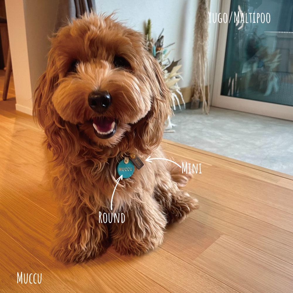 WanTag【ラウンド】ペット用犬 迷子札