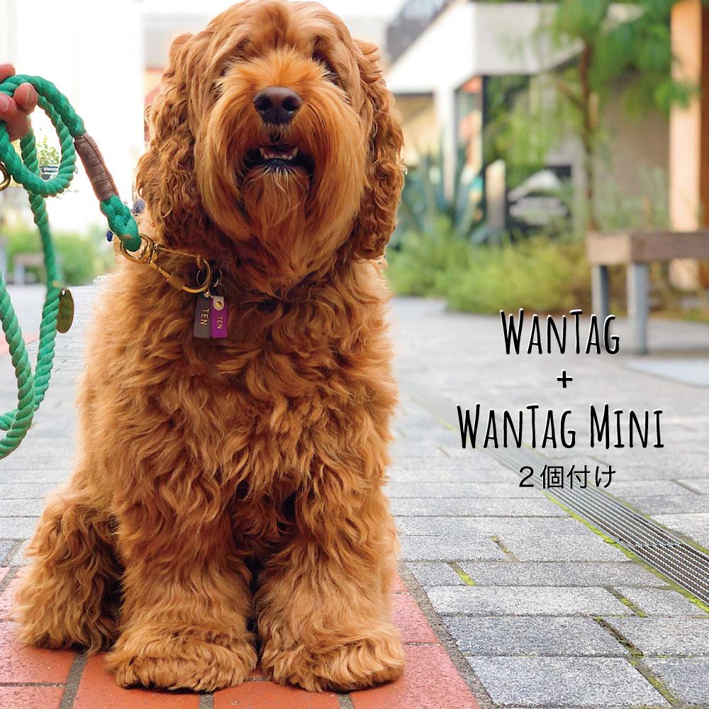 WanTag【ミニ】ペット用犬 迷子札