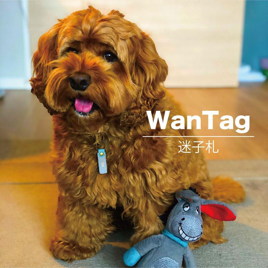 WanTag【ノーマル】ペット用犬 迷子札