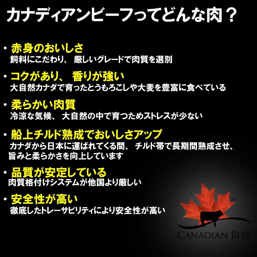 熟成赤身のミスジステーキ【カナディアンビーフ】400g(約200g×2枚)