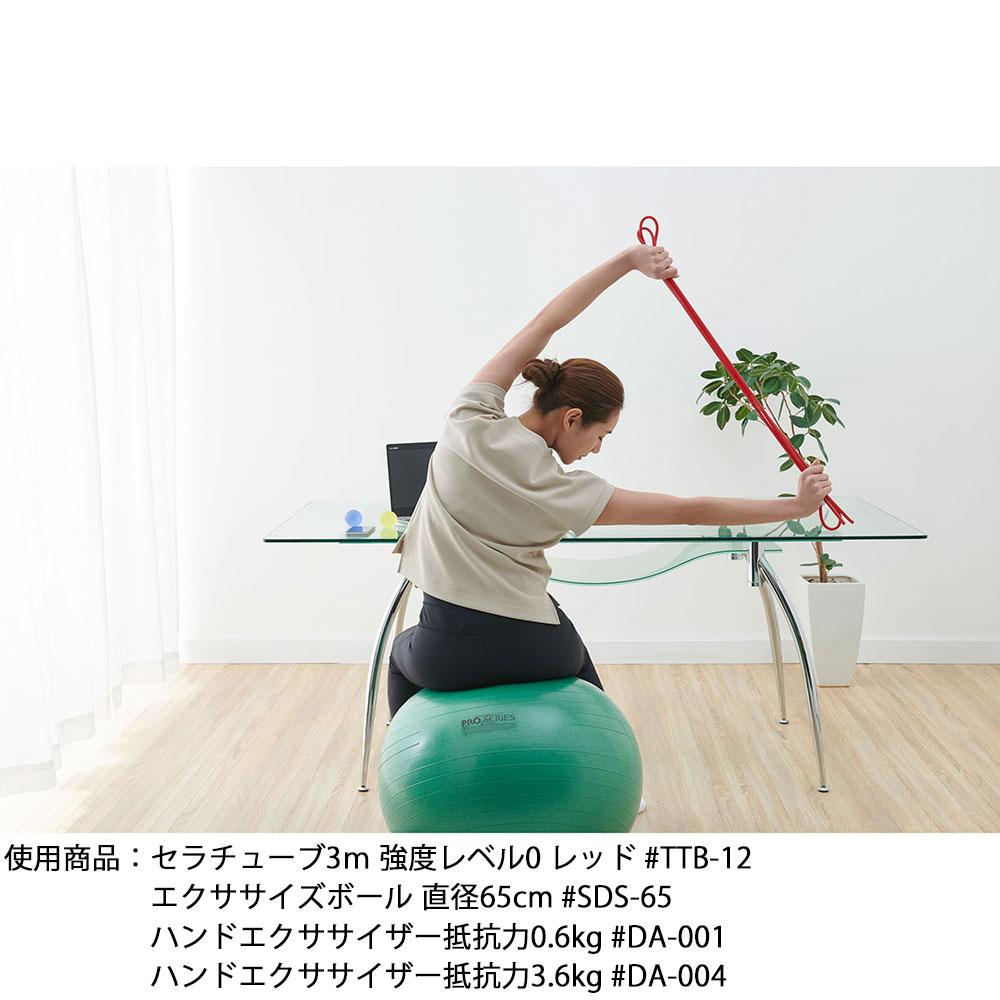 ▼家トレキャンペーン対象商品▼     エクササイズボール 直径55cm #SDS-55