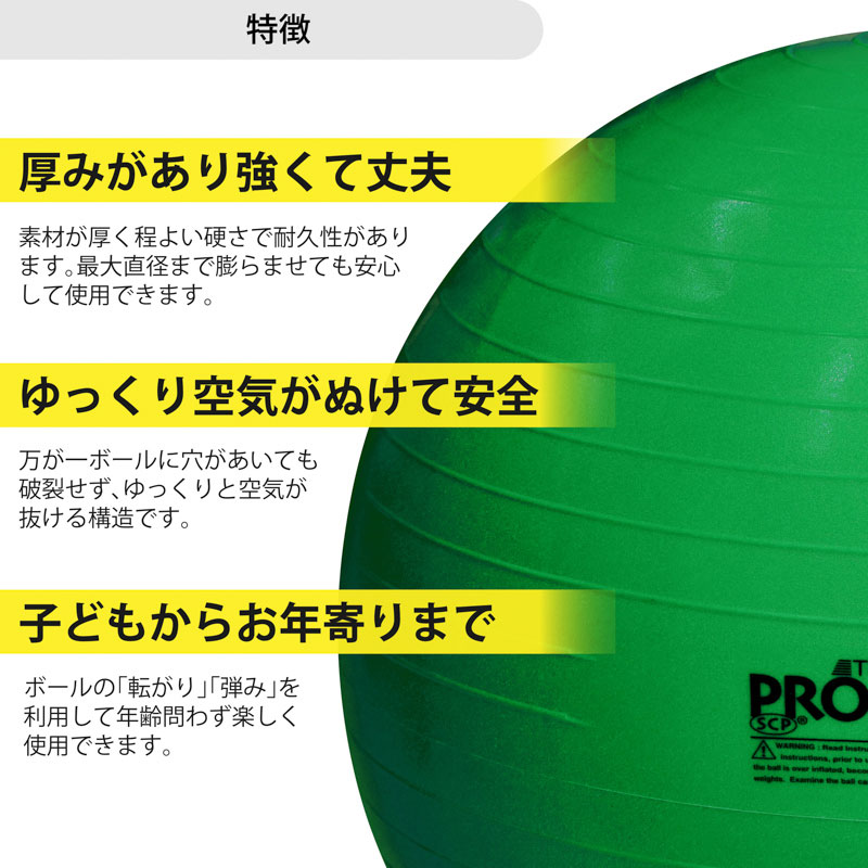 ▼家トレキャンペーン対象▼       エクササイズボール 直径65cm #SDS-65