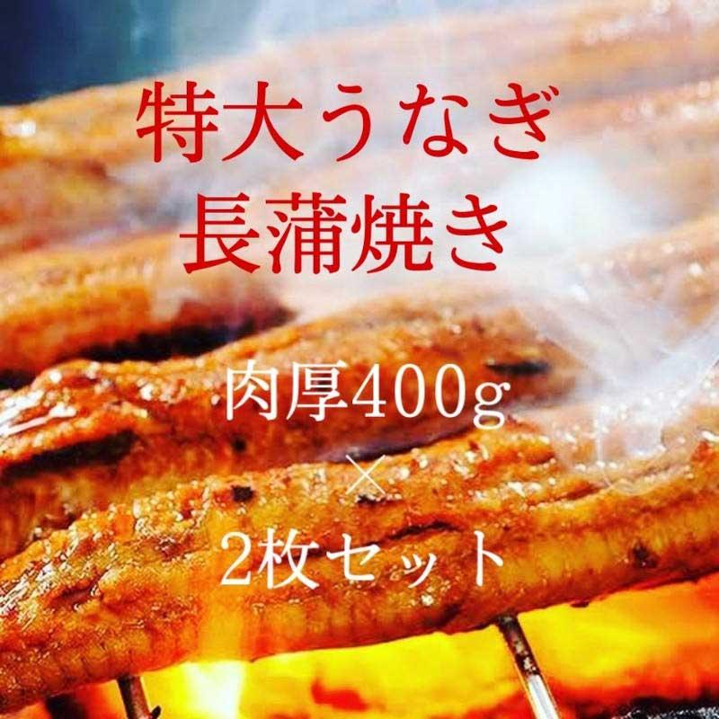 鰻 長蒲焼き ロストラータ種 特大サイズ ウナギかば焼き お家ご飯 真空パック 1枚400g 2枚セット肉厚うなぎ