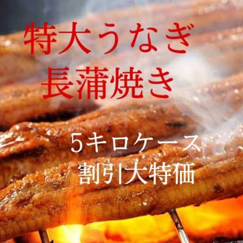 鰻 長蒲焼き ロストラータ種  特大サイズ ウナギかば焼き お家ご飯 5キロケース割引特価