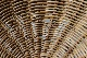 Rattan scoop chair (B-a)<p>ラタンスクープチェア (B-a)</p>