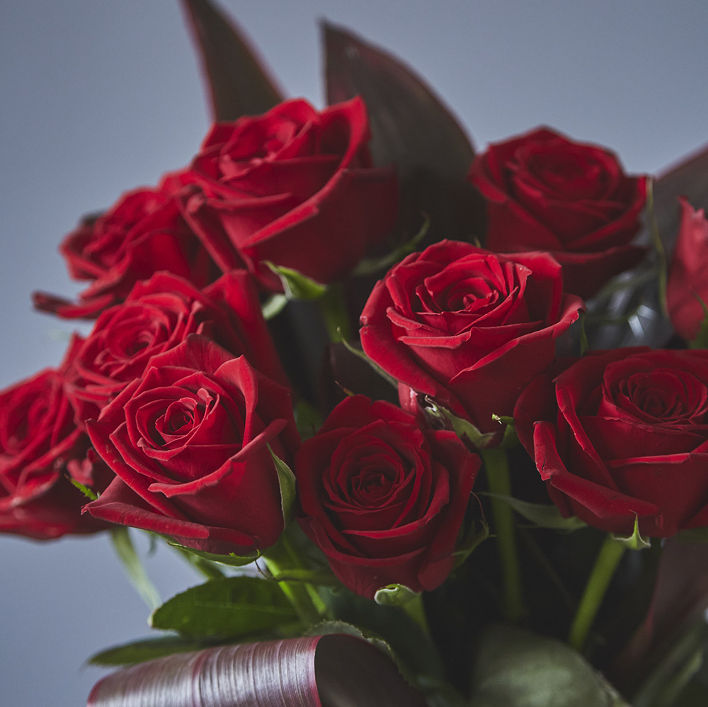 【生花ブーケ】 12本のバラの花束 One Dozen Roses