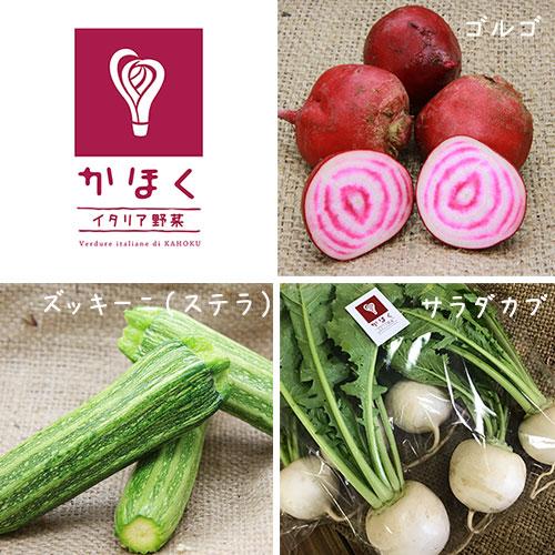 かほくイタリア野菜  厳選 詰合せ 7 - 8種セット 【かほくイタリア野菜研究会】