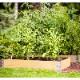 クロヌス ガーデンボックス  ナチュラル800 |レイズドベッド  木製プランター 【Kronus】