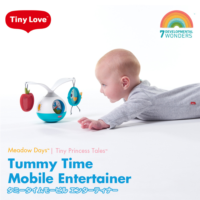 TinyLove(タイニーラブ) Meadow Days タミータイムモービルエンターテイナー