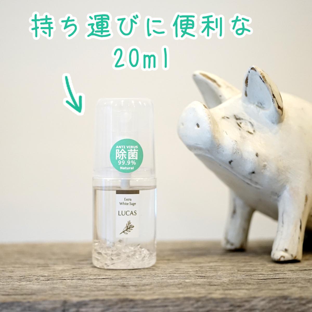 マスク除菌スプレー LUCAS 爽快ミントの香り (100%天然成分 & 99.9%除菌)ハンカチスプレー